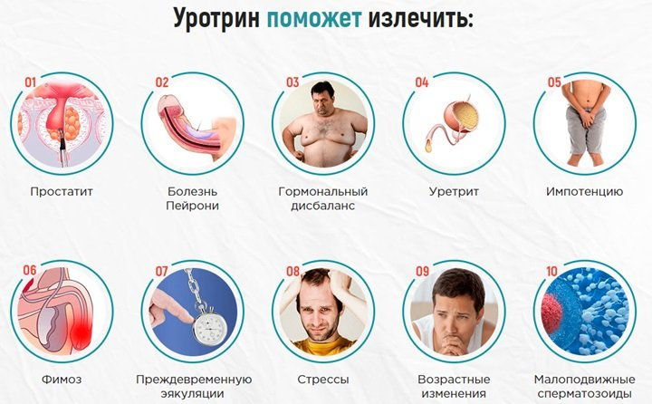 уротрин лекарственное средство против болезней мочеполовой системы